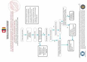 12. Criza convulsiva-page-001